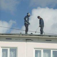 На крыше соседнего дома. :: Михаил Полыгалов