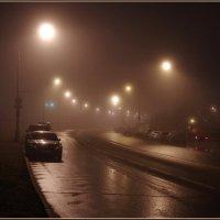 Ночь. Туман. Пустынная дорога. :: Николай Панов