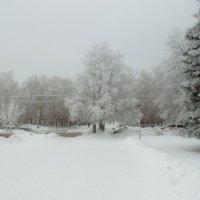 зимняя дорога :: 6х9 Kolesik