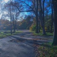 Удельный парк,город С-Пб. :: Валентина Потулова