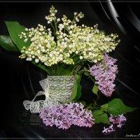 Два аромата... :: °•●Елена●•° Аникина♀