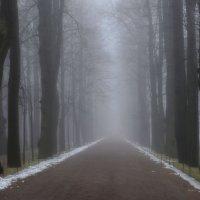 Туманный Петергоф..... :: Юрий Цыплятников