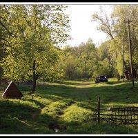 В деревне... :: Алексей Дмитриев