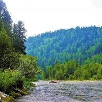 Зелёные берега Тумуяса :: Сергей Чиняев