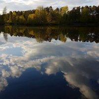 Гладь зеркальная пруда неба дарит отражение... :: Ольга Русанова (olg-rusanowa2010)