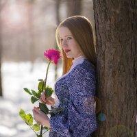 Романтика в зимнем лесу :: Иван Духоф
