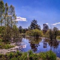 Сторожевая башня :: Андрей Дворников