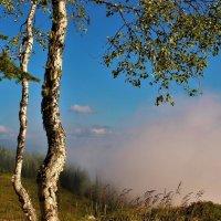 Поднимается туман из долины :: Сергей Чиняев