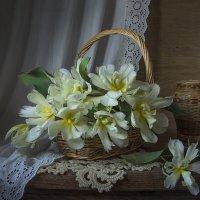 Корзина с тюльпанами. :: Людмила Костюченко