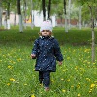 Соня и одуванчики :: Павел Кореньков