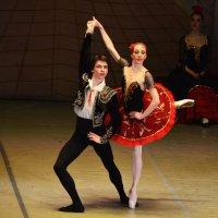 """Сцена из балета """"Дон Кихот"""" :: Татьяна Евдокимова"""