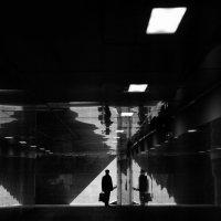 На границе между светом итенью. :: Дмитрий Воронин