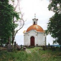 Старое кладбище :: Анастасия Заплатина