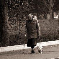 Бабушкин дружок :: Екатерина Торганская