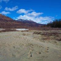 Песчаные дюны Иркута :: Анатолий Иргл