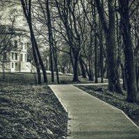 По дорожкам парка :: Константин