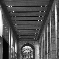Риношенте после полуночи (серия - в Миланской ночи) :: M Marikfoto