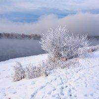 Туманный берег :: Анатолий Иргл