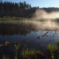 Весенней утренней порой... :: Александр Попов