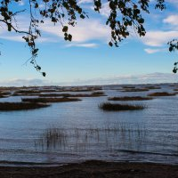 Вид на  Финский залив :: Олег Денисов