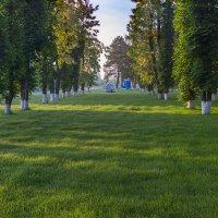 Роса на траве :: Бронислав Богачевский