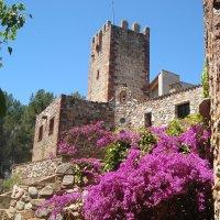 Знойное лето Испании :: Ольга