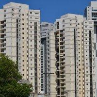 строимся :: Ефим Хашкес