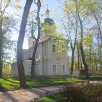 Знаменская церковь в майской зелени :: Елена