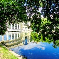 Чистые пруды. :: Диана Ламухина