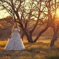 Солнце в саду :: Женя Рыжов