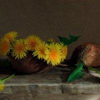 Весна! кокосы зацвели..) :: зоя полянская
