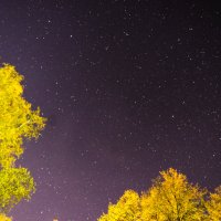 звёздное небо :: Константин Сафронов