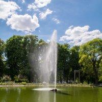 Ludwigsburg  парк :: Sergej
