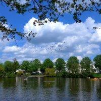 Птицы над озером :: Nina Yudicheva