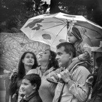Такая разная музыка дождя :: Лидия Цапко