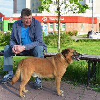 Пёс Борис с хозяином. :: Татьяна Помогалова