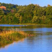Озеро :: Бронислав Богачевский
