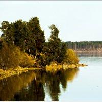 Река Онега. :: Марина Никулина