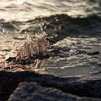 Вода и камень. :: Сергей