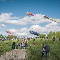 """Царицыно - XV весенний фестиваль воздушных змеев """"Пестрое небо"""" :: Борис Гольдберг"""