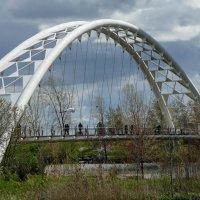 Арочный мост через реку Хамбер и летящая цапля (Этобико, Канада) :: Юрий Поляков