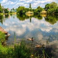 Весенний день на реке Цне................ :: Александр Селезнев