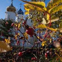 Пайгармский Параскево-Вознесенский женский монастырь. :: Михаил