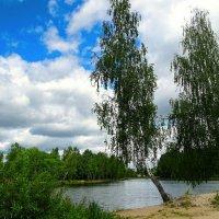 Природа Смоленщины :: Милешкин Владимир Алексеевич