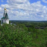 Владимир,утопающий в зелени :: Сергей Цветков