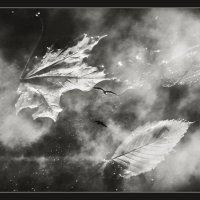 Когда небо в осколках луж... :: Александра Бенцман