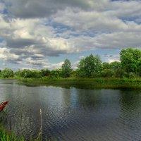 Прекрасная погода :: Лара Симонова