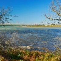 озеро Донузлав  весной :: Андрей Козлов