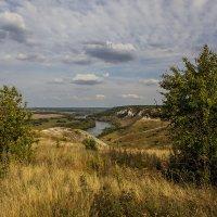 На меловых горах у Дона Август 2014 :: Юрий Клишин
