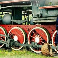 Красная шапочка и Серый волк :: Кай-8 (Ярослав) Забелин